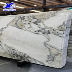 Italian Picasso Marble Slab Tiles For Wall Floor